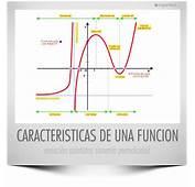 Caracter&237sticas De Una Funci&243n  Esquemat