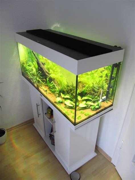 aquarium beleuchtung selber bauen yarial led beleuchtung schrank selber bauen