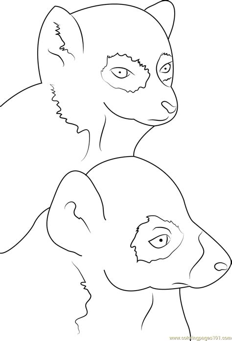 free coloring pages of lemurs