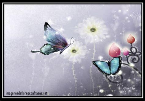 imagenes de mariposas brillantes para facebook imagenes mariposas para facebook imagenes de mariposas