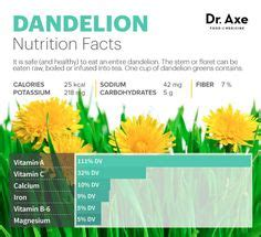 Dr Perennials Detox by Benefits Of Dandelion Root Dandelions Herbs And Remedies