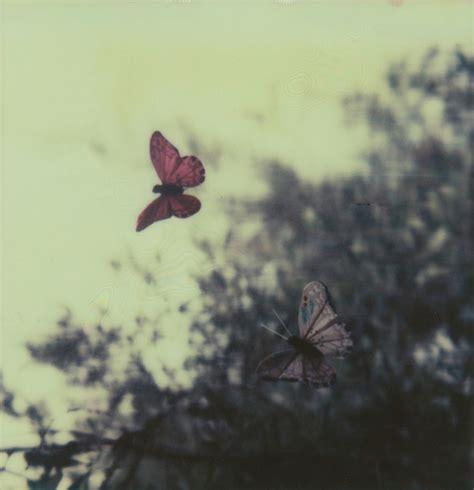 imagenes de amor tumblr para portada m 225 s all 225 de las palabras linda canci 243 n para un domingo