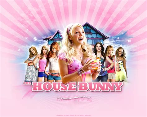 the bunny house the house bunny images the house bunny hd wallpaper and background photos 5940977