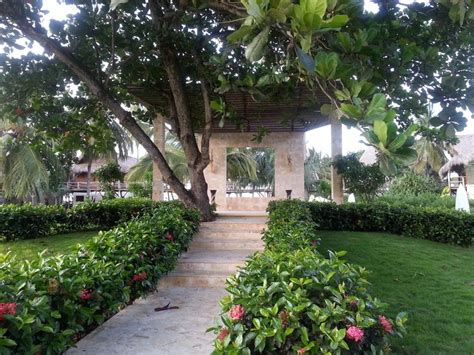 Wedding At Zoetry Punta Cana by 59 Best Images About Destination Weddings On