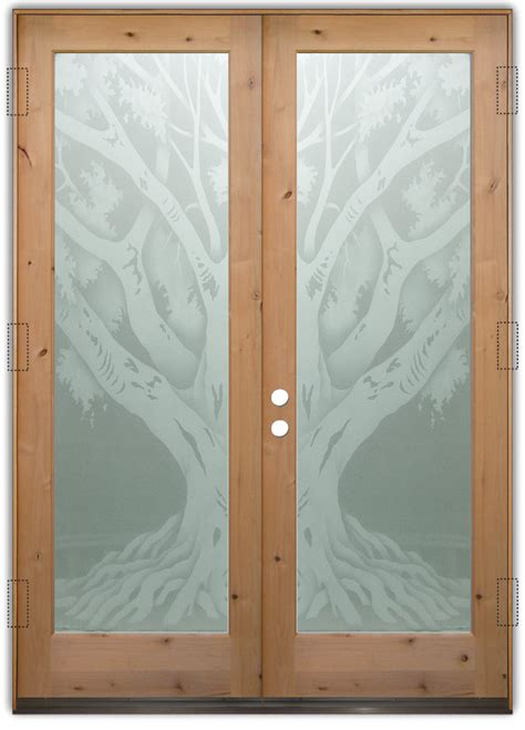 Frosted Glass Exterior Doors Entry Doors With Frosted Glass Designs Sans Soucie Glass