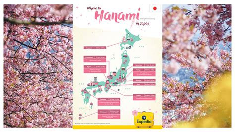 when did japan give us cherry blossoms when did japan give us cherry blossoms when did japan give