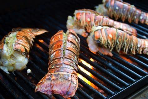 Calamar Grillé by Sommer Sonne Grillen Http Www Lobsterking De