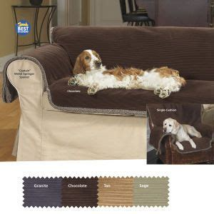 best sofa for pet hair 17 best images about for your on dogs