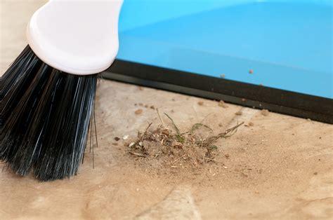 sweeping beige floor