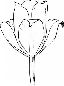 free printable tulip coloring pages kids
