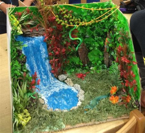 rainforest craft ideas for biome projects search diorama project