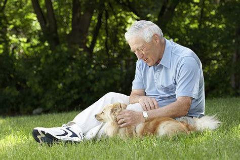 perros con personas la actitud positiva ante la vida fenotipo de la