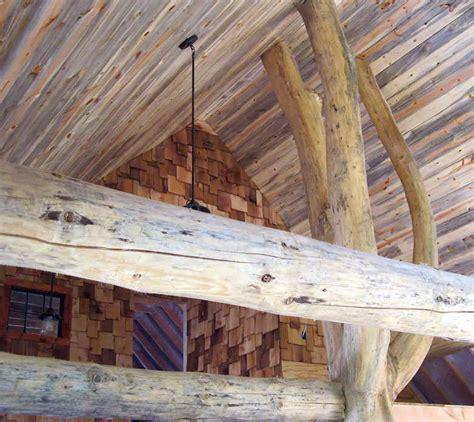 Obat Pembasmi Jamur Pada Selangkangan harga pengawet kayu akasia di jogja pengawetkayu