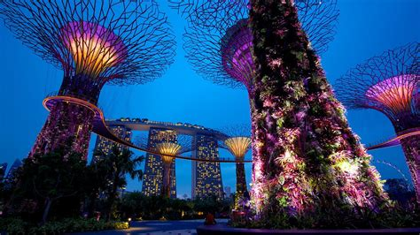 Singapore Gardens By The Bay by Gardens By The Bay In Singapore Expedia