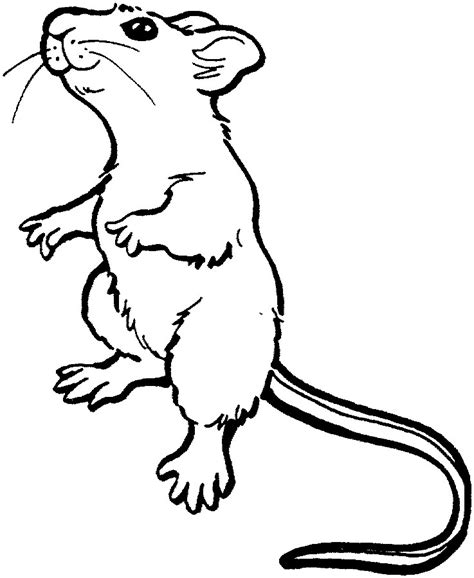 Land Animals To Color Mouse Coloring Pages