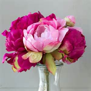 artificial peonies silk peony bouquet contemporary artificial flowers plants and trees by terrain