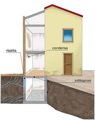 muffa in casa rimedi muffa umidit 224 e condensa mettono in pericolo la salute