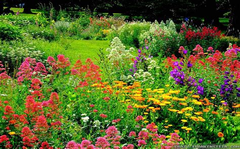Beautiful Garden Wallpaper Wallpapersafari Flower Gardens In