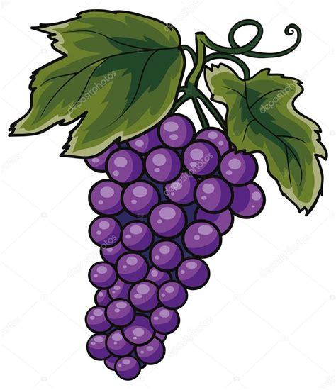 Clipart Uva Grappolo D Uva Vettoriali Stock 169 Kopirin 58287225