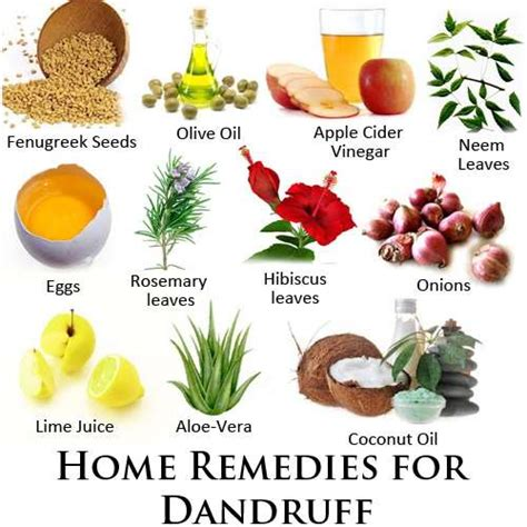 8 Best Home Made Treatments by Best Remedies For Dandruff