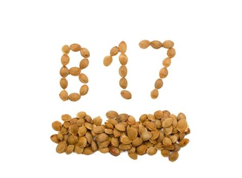 Vitamin B17 the about cancer vitamin b 17 vitamin b17 cancer