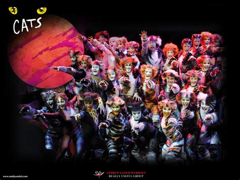 cats musical images cats the musical