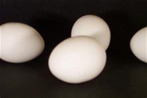 alimenti poveri di potassio azienda usl imola u o nefrologia e dialisi