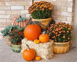 Fall Flowers For Window Boxes - 25 outdoor fall d 233 cor ideas that are easy to recreate shelterness