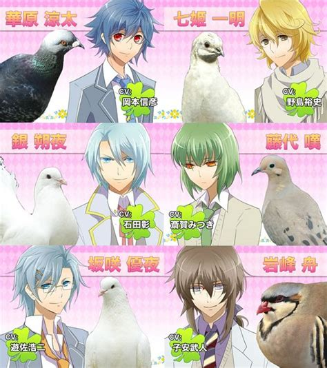 hatoful boyfriend hatoful boyfriend all of the pigeons even anghel and