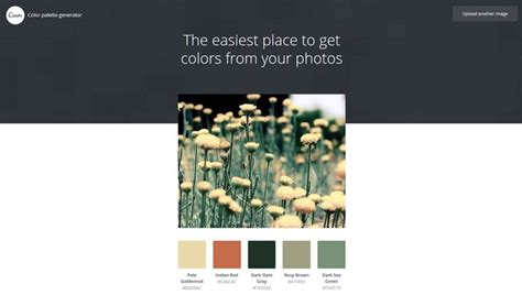 canva color palette 20 best color palette generators and galleries for designers