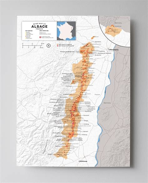 wines of alsace guides to wines and top vineyards books alsace wine a guide for oenophiles wine folly