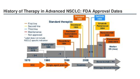 Oncology Cancer 4 In 1 C Immunooncology In Lung Cancer