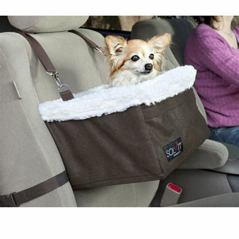 car seats for medium dogs 15 best images about car seat on cars