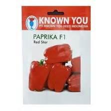 Repacking Benih Paprika Merah Merk Known You Seed New18 benih seledri titus 100 biji johnsons seeds bibitbunga
