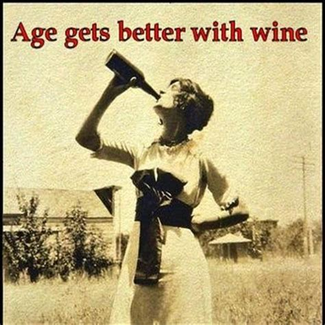 Wine Birthday Quotes Funny Quotes Age Gets Better With Wine Dump A Day