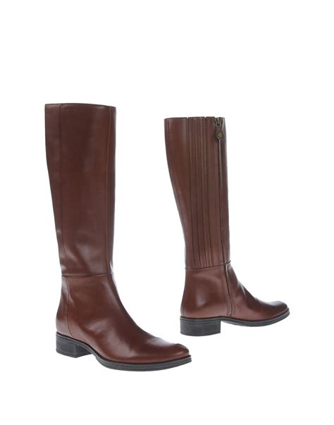 geox boots geox boots in brown lyst