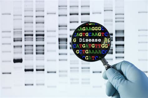 genetic test toolkits genetic testing is this my path to a