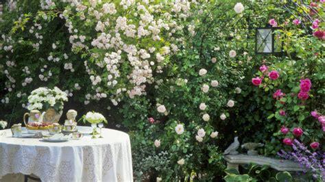 giardini provenzali giardino provenzale oasi di pace e di sogno westwing