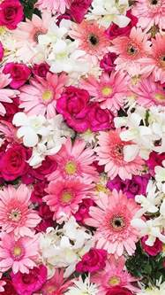 flower wallpapers 25 best ideas about floral wallpaper iphone on pinterest screensaver flower wallpaper and