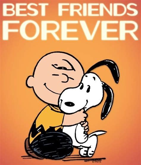 Kaos Best Friend Forever pin by nguyen on the peanut gallery