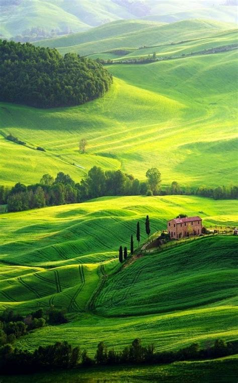 libro italian nature of photographs landscap kitty floryse google