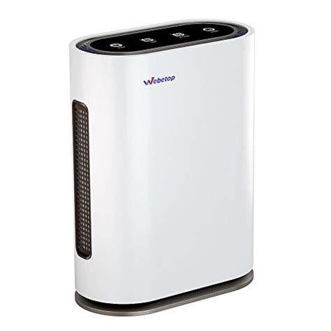 webetop air purifier     true hepa filters real