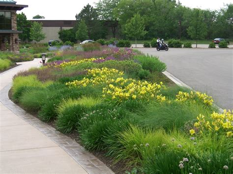 roy diblik co owner of northwind perennial farm in burlington wi designed the gardens in front