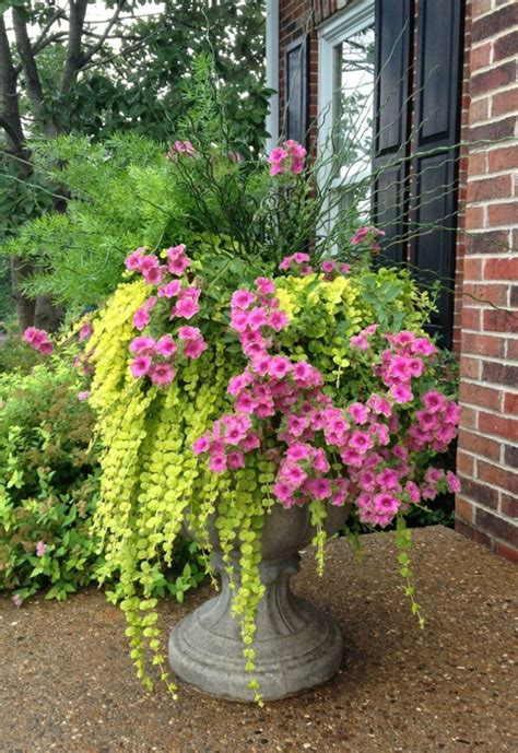 Ideas For Planters With Flowers by Front Porch Flower Pots Ideas For Front Porch Plants For