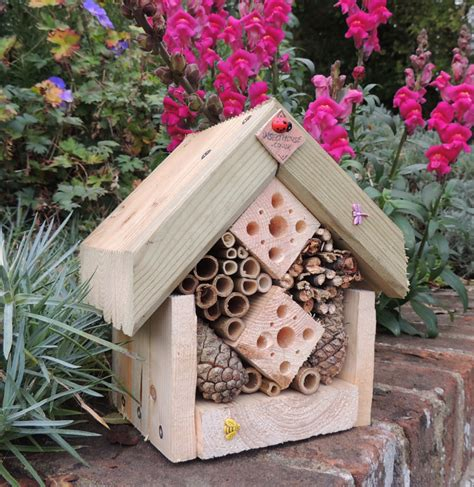 houses to buy uk buy an insect house insect house
