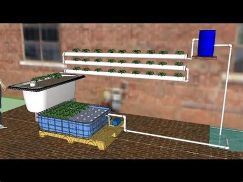 How To Build A Backyard Greenhouse Diy Aquaponics For Beginners 2014 A How To Guide To