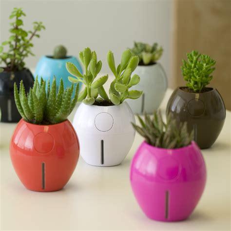 self watering plant pots karim rashid s grobal plant pots are self watering
