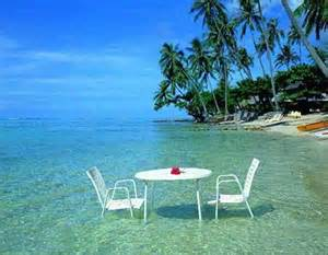 Natures Table Tampa Beautiful Island My Dream Sunny Beach Soft Golden Sand
