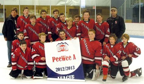 steamboat youth hockey tournament pee wees capture state chionship steamboattoday