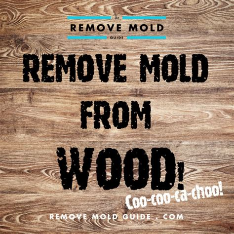 How To Clean Mold Wood Furniture by Remove Mold From Wood 2014 Guide To Mold Removal